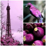 Ideas for Using Radiant Orchid – Pantone Color of the Year