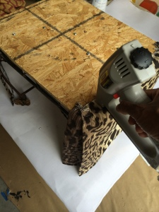 leopard start bottom