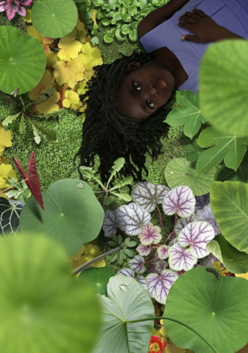 Ruud Van Empel - Eden at rest