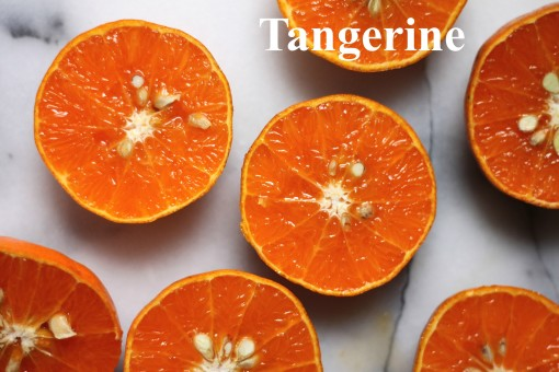 Tangerine Spring 2015 color trends