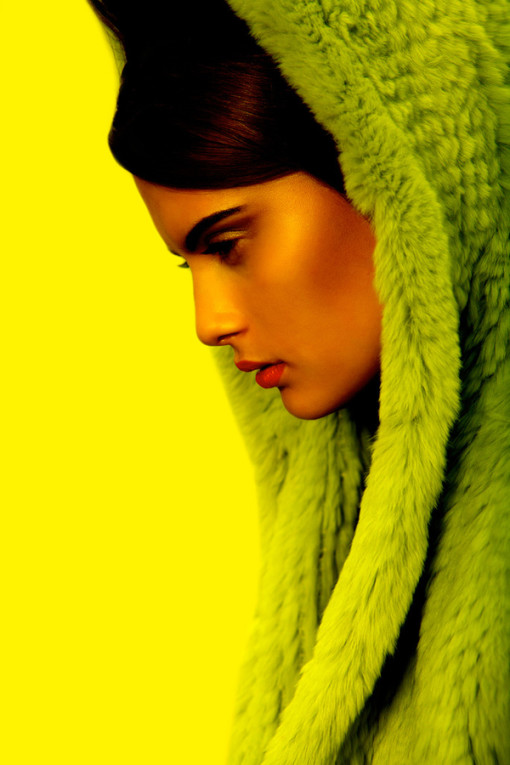 Color Palette: Wild About Chartreuse