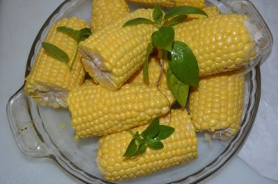 Corn on the Cob - Elle Gibson